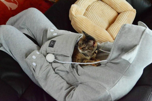 hoodie-cat-pouch-pocket-sweatshirt-mewgaroo-5-314x209