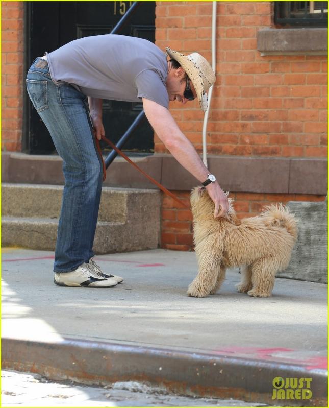Hugh Jackman Walks His Dog Allegra