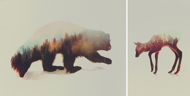 nature-photography-double-exposure-animal-portraits-andreas-lie-14-15