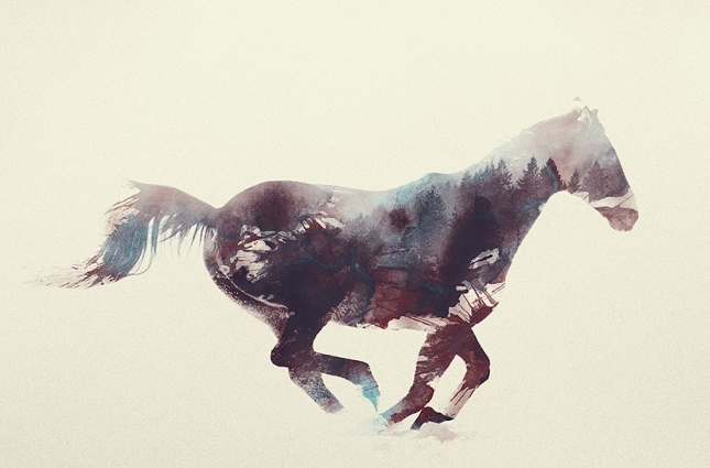 nature-photography-double-exposure-animal-portraits-andreas-lie-18