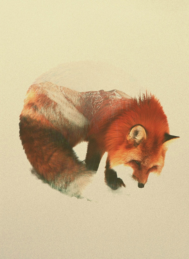 nature-photography-double-exposure-animal-portraits-andreas-lie-3