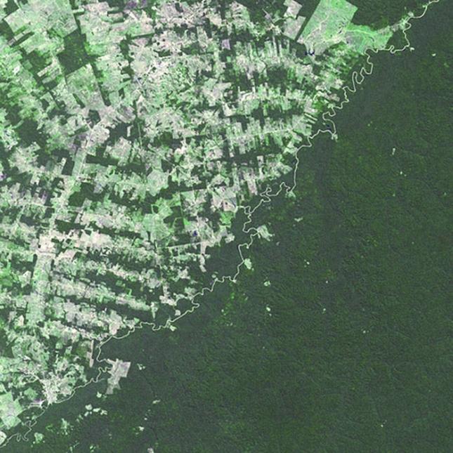 Бразилия и Боливия. Слева - Бразилия, где вырубают леса. Затем граничная река, а справа Боливия.