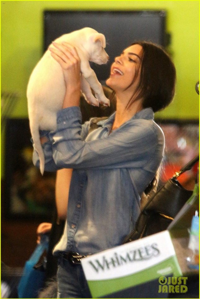 Kendall Jenner adopts a new puppy in Weho