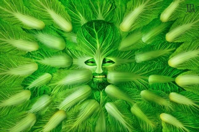 Мангольд, ацельга, листовая свёкла.