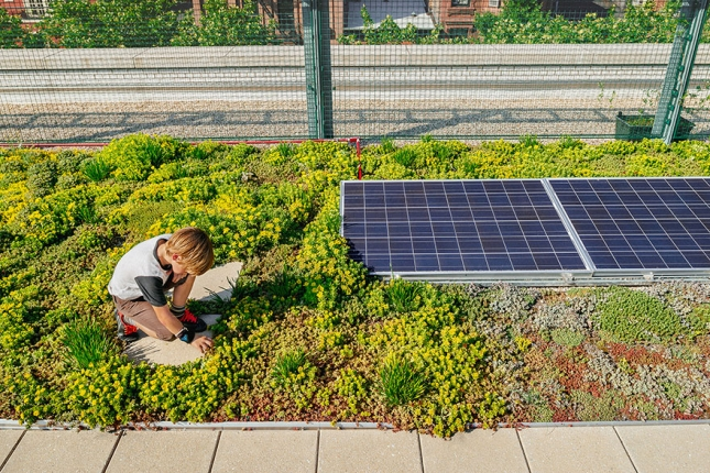 solar-panel-roof-green-schools-nyc-102