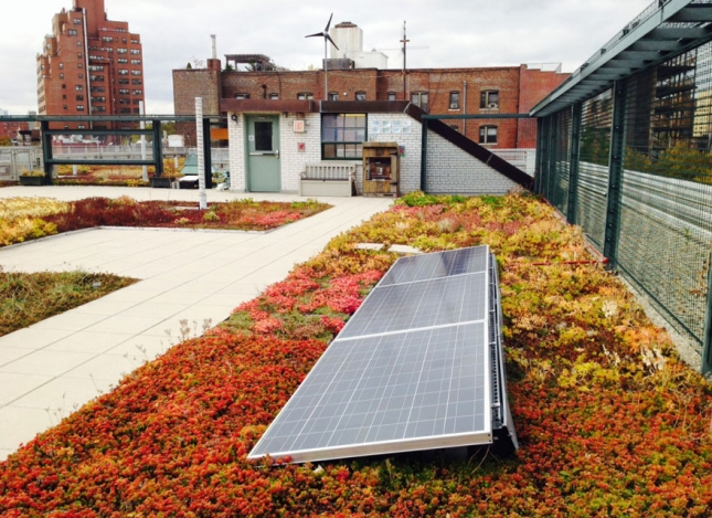 solar-panel-roof-green-schools-nyc-72