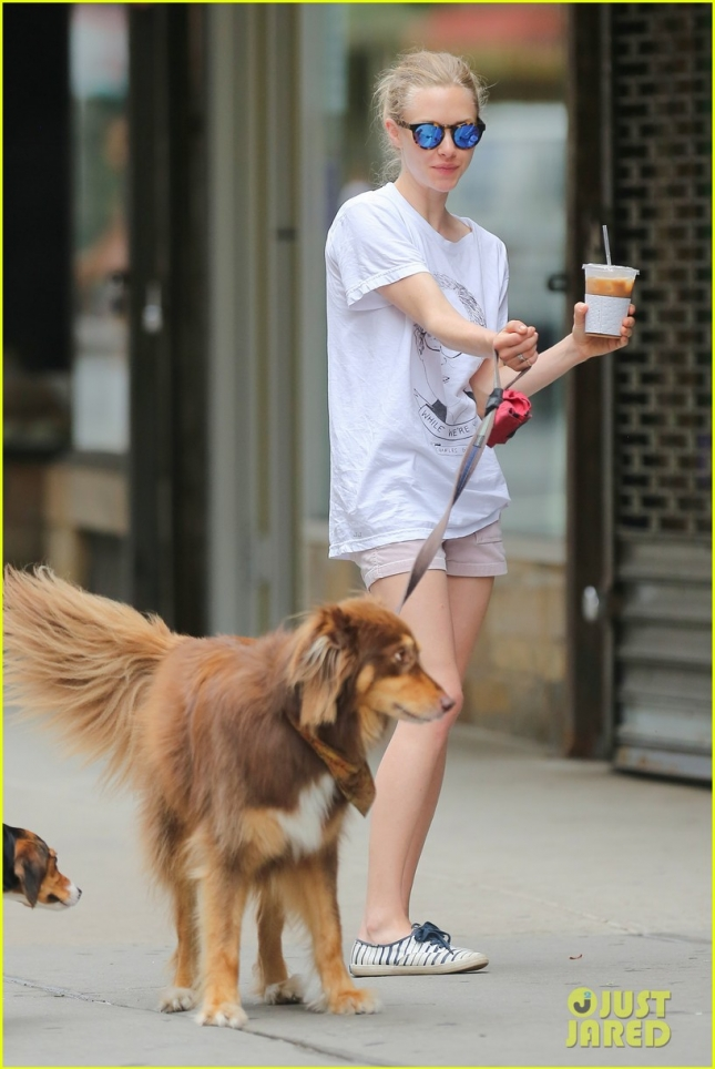Finn makes new friends while out in NYC with Amanda Seyfried **USA ONLY**