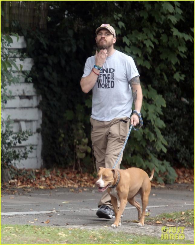 EXCLUSIVE- Tom Hardy dog walk