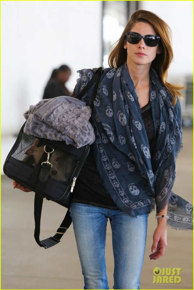 Ashley Greene and her pooch make it back home