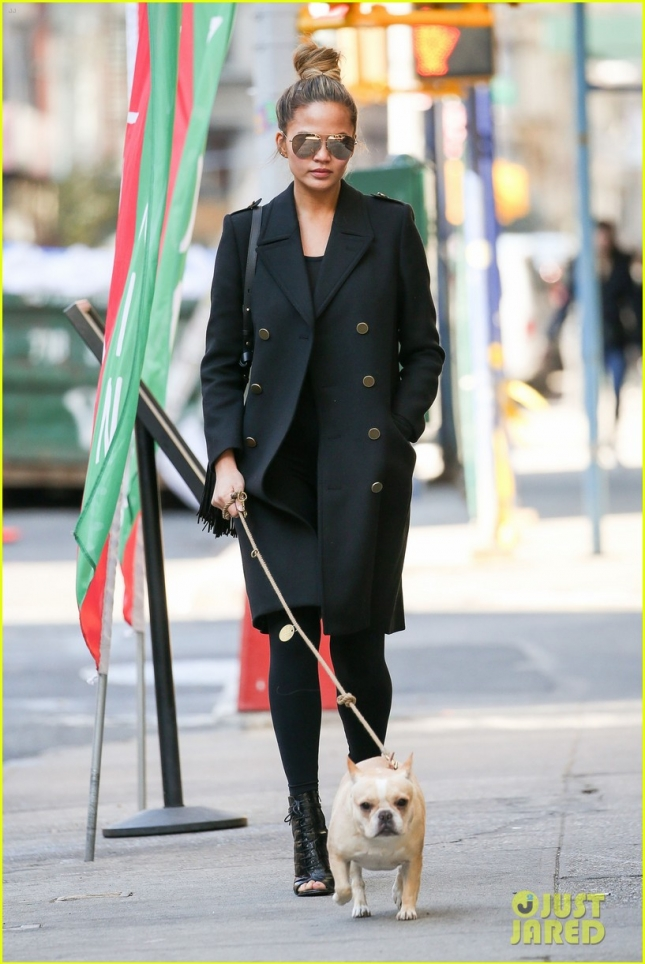 Pregnant Chrissy Teigen Walks Her Dog In New York City