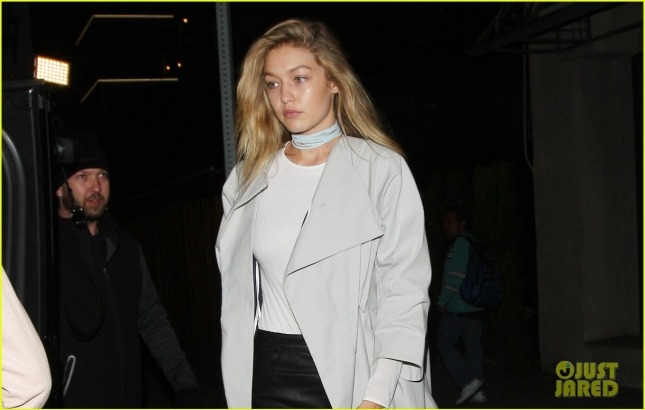 Gigi Hadid Parties At The Nice Guy Club Alone