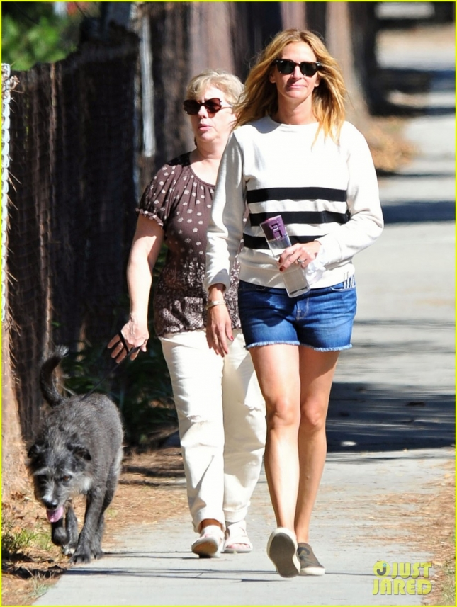 julia-roberts-is-in-great-spirits-during-her-dog-walk-01