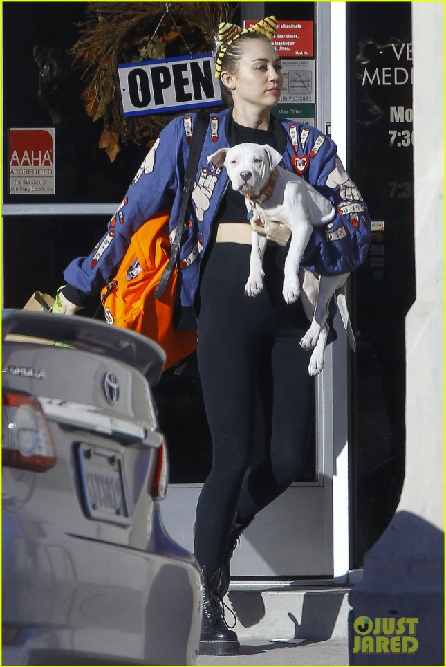miley-cyrus-adopts-new-pitbull-puppy-milky-03