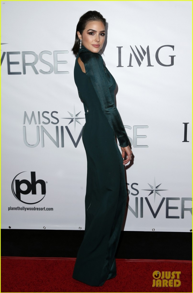 2015 Miss Universe Red Carpet
