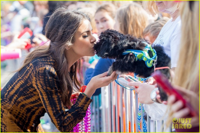 Ian Somerhalder and Nikki Reed get in the Mardi Gras spirit as Monarchs of the 'Mystic Krewe of Mardi Paws' in Mandeville, Louisiana