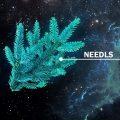 Darkside Medium – Needls