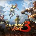 Shadow fight 3 — 8.2