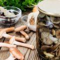 Опята — 54% (процент суточной потребности витамина в 100 г.)