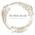 The Elder Scrolls Online (20,828 макс за сутки)
